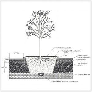 soil_diag-1
