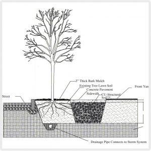 soil_diag-3